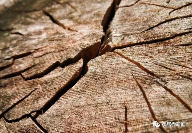 卡尔玛家居:除湿机干燥的国产设备约占70%左右